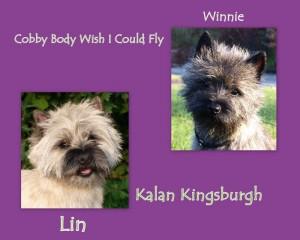 Lin Winnie