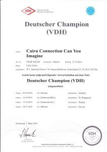 Chica's kampioenschapscertificaat
